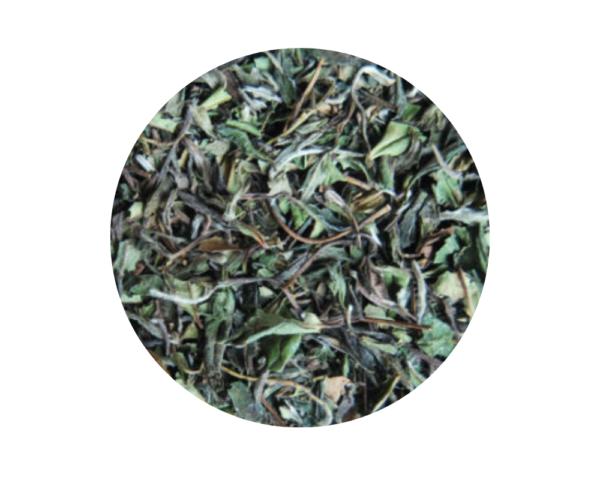 Té blanco Pai Mu Tan Ecológico